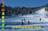 【伏牛山休闲滑雪游】洛阳伏牛山休闲滑雪2日游