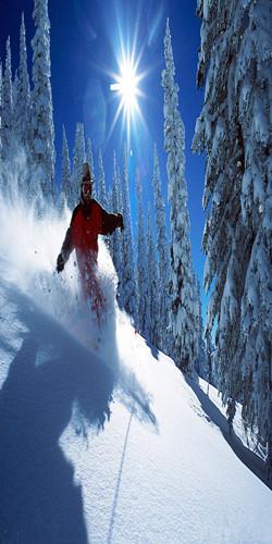 冬季滑雪专场
