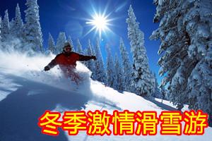 冬季滑雪游