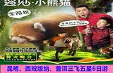 【全陪班遇见小熊猫】昆明、西双版纳三飞六日游