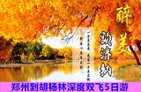 【金秋胡杨林】郑州到胡杨林-1-8道桥深度双飞5日游