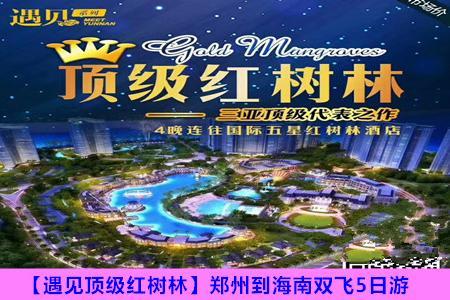 【遇见顶级红树林】郑州到海南双飞5日游-4晚连住红树林酒店