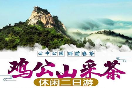 【信阳采茶节】郑州到鸡公山+采茶2日游
