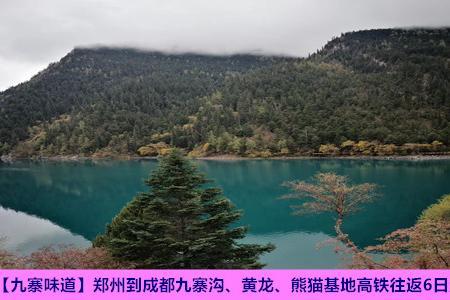 【九寨味道】郑州到成都九寨沟、黄龙、熊猫基地高铁往返6日游
