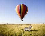 郑州到迪拜旅游攻略_肯尼亚、南非、迪拜观鲸十一日豪华之旅