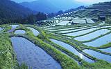 郑州到桂林、大漓江、印象刘三姐贵族至尊纯玩五日游