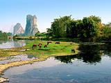 郑州到广西舌尖上的桂林---大漓江、银子岩四星纯玩美食之旅