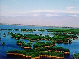 郑州到银川沙湖、影视城、贺兰山岩画、沙波头双卧5日游
