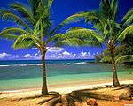 郑州到美国西海岸、夏威夷九日游