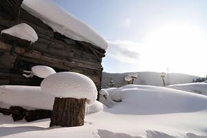 春节~H1哈尔滨冰雪大世界、亚布力滑雪场、中国雪乡双飞五日游