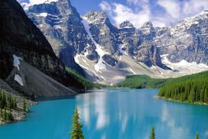 加拿大个人旅游签