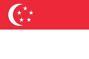 新加坡个人旅游签