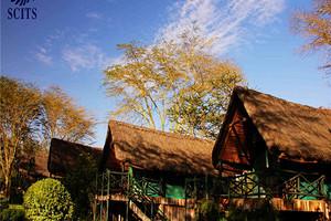 [南非一地8天彩虹之旅 ]埃塞俄比亚航空/好望角保护区
