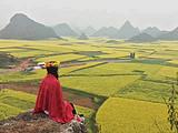 黄山、婺源篁岭、新安江滨水旅游区 赏花品质之旅 双高4日游
