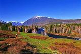 西部5省专列开班了-青海、甘肃、新疆、宁夏、内蒙古专列14日