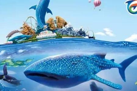 长隆研学团--长隆动物园、飞鸟乐园、珠海长隆海洋王国双卧6日