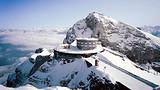 南极半岛+南美四国27日游