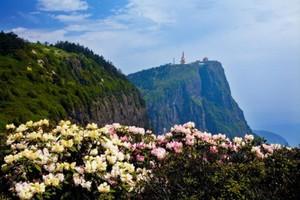 【峨眉之巅】成都 、峨眉山、乐山、熊猫基地、都江堰双飞5日游