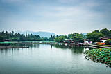 【恋恋夕阳】华东五市+扬州+双水乡乌镇、西塘双卧八日游