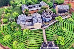 春节西双版纳双飞6天经典游   去版纳感受傣族风情