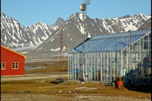 探秘北极三岛18日深度游