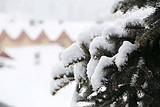 哈尔滨-亚布力/万科双次滑雪-徒步穿越林海雪原-雪乡7日