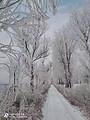 哈尔滨、冰雪大世界、亚布力滑雪、中国雪乡、吉林雾凇岛双动五日