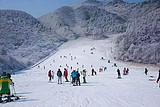 【寒假亲子】哈尔滨-亚布力激情滑雪-二浪河林场-雪乡7日