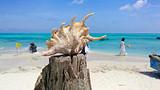 海南 三亚三沙-西沙群岛旅游-长乐公主号邮轮4天3晚 跟团游