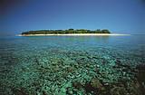 【圣在心意】 澳大利亚东海岸心形珊瑚礁10日