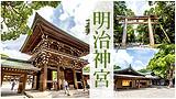 特价关东浪漫5日行程(1天自由活动)