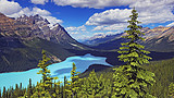 加拿大西海岸+3大国家公园落基山巡礼12天