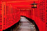 7-8月和風紀行-日本本州雙古都暢選六日游
