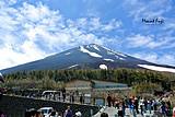 8月E線:自在行-日本本州雙古都7日暢游
