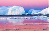 中国人包船南极摄影巡游 巴西 阿根廷23天团