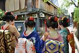 10月本州双古都温泉美食赏枫六天游