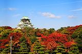 11月B2线:和枫纪行-19年日本本州双古都六日游(忍者村)
