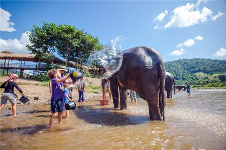 泰国走透透 清迈曼谷芭堤雅四飞八日游