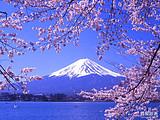 青岛旅行社推荐到日本旅游_日本本州6日游_清新日本游
