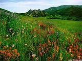 哪个草原好玩?青岛到希拉穆仁大草原单飞五日游_驰骋草原情