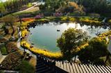青岛到泰国最好的旅游,曼谷 芭提雅直飞6日游【无自费项目】