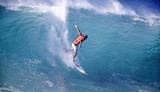新西兰旅游团---众悦  甄选一价全含  澳新海豚岛10日