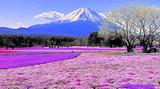 2019暑期【奢华日本】尊享和风奢华新体验6日游