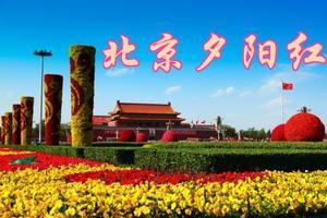 2020春节经典线路 慢游北京高飞四日【一价全包 含景交】