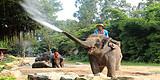 泰国清迈亲子五日游