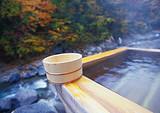 清远牛鱼嘴原始森林公园、金鸡岩、新银盏温泉、北江小三峡两天团