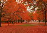 深圳去韩国首尔济州五天魅力之旅-尽享韩国大长今之浪漫