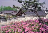 广州首尔南怡岛清溪川5天赏樱花团