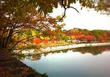 日本旅游-日本札幌-北海道五天休闲之旅