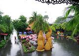 【国庆】曼谷—芭提雅5晚6日美食游 全程入住当地星级酒店
